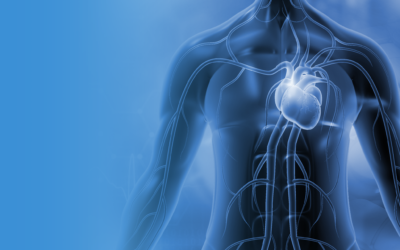 Vesalius Cardiovascular Closes $1M Seed Investment Round – Plans Series-A Financing by End of Year